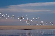 - Laguna de los Pozuelos, Monumento Natural