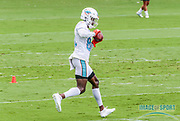 Miami Dolphins wide receiver Preston Williams(82) catches a pass during Minicamp at the Baptist Health Training Facility at Nova Southeastern University, Wednesday, June 5, 2019 in Davie, Fla. (Kim Hukari/Image of Sport)