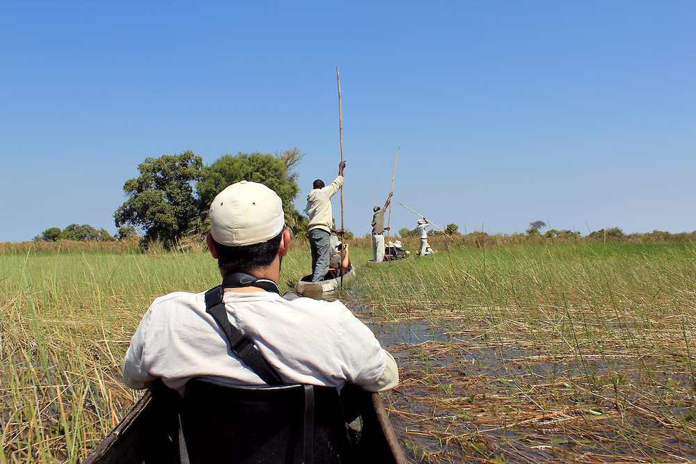 Ride in a traditional Okavango Delta mokoro canoe, through the reed covered water. North of Botswana.
