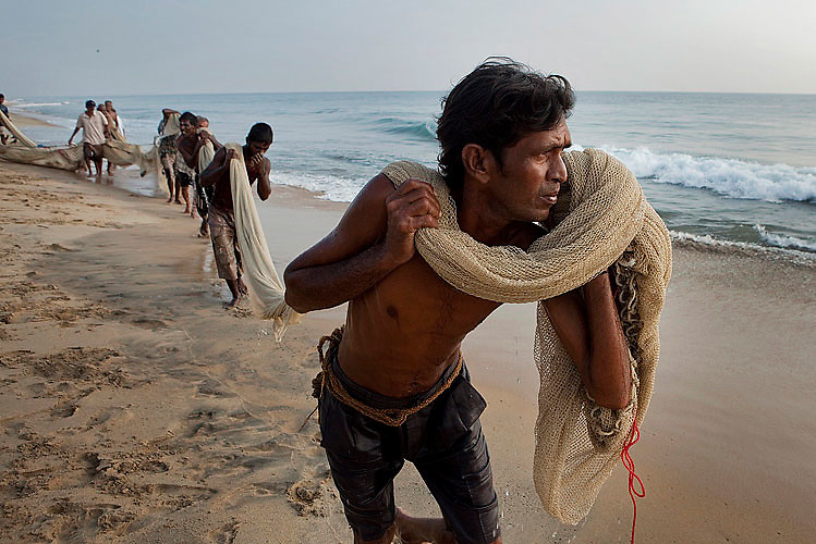 Fishermen pulling their nets. Nearly 5,000 fishermen died, and the survivors have all lost at least one close relative. Kalmunai, October 2009.