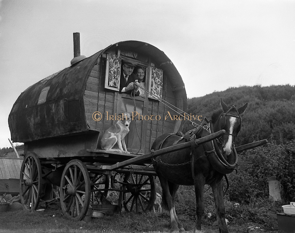 Travelling family, the Murphy's, at Kilpedder, Co. Wicklow.13/10/1958. barrel, top, wagon, Tinker,