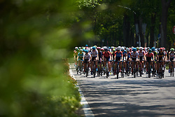 The peloton approach at Tour of Chongming Island 2019 - Stage 1, a 102.7 km road race on Chongming Island, China on May 9, 2019. Photo by Sean Robinson/velofocus.com