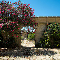 Walled garden with archway and plants in Mosta;<br />