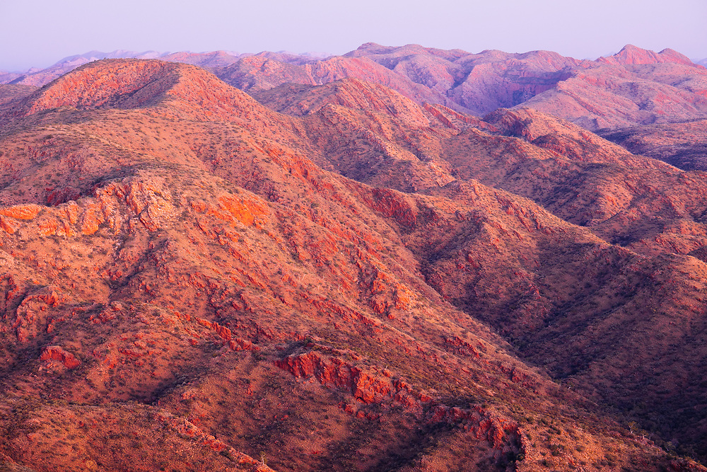The pre-dawn glowing contours of the West MacDonnell Ranges from Brinkley Bluff. Larapinta Trail, Tjoritja/West MacDonnell National Park.