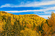Autumn colors in the Chic-Choc Mountains, a mountain range that is  part of the Notre Dame Mountains, which is a continuation of the Appalachian Mountains. This is a provincial parc, not a true federal park.<br />Parc national de la Gaspésie<br />Quebec<br />Canada