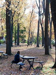 Mulher lendo livro em um parque , ilha Santa Helena Montreal/ Woman reading a book at a park in Ile Sainte-Helene, Montreal.
