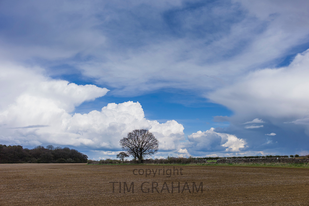 Cloud formation Towering Cumulus (left) Cumulonimbus (right) and Cirrus at high altitude at Swinbrook in the Cotswolds, UK