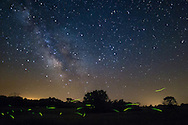 Fireflies buzz around under the milky way. This picture was taken in Weinberg King State Park in Illinois. This location has the darkest skies in the state.