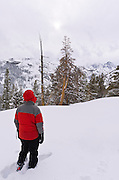 Backcountry skier in the Ansel Adams Wilderness, Sierra Nevada Mountains, California USA