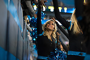 January 3, 2016: Carolina Panthers vs Tampa Bay Buccaneers. Carolina Panthers cheerleader