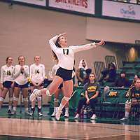 3rd year setter, Kirstin Greve (17) of the Regina Cougars during the Women's Volleyball home game on Thu Nov 15 at Centre for Kinesiology, Health & Sport. Credit: Arthur Ward/Arthur Images