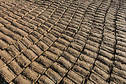 Mudbricks for Muslim graves dry in evening sunlight of a local cemetery in the village of Qum (Koom), on the West Bank of Luxor, Nile Valley, Egypt.