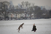 A pet dog enjoys catching snowballs in Ruskin Park, south London during the bad weather covering every part of the UK and known as the 'Beast from the East' because Siberian winds and very low temperatures have blown across western Europe from Russia, on 1st March 2018, in Lambeth, London, England.