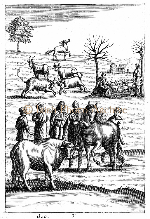 Sheep, cattle, horses and goats: In foreground a horse and a cow are being assessed by farmers. In right background a shepherd plays on pan pipes as he and his companion guard their flock. From 18th century edition of Virgil 'Georgics' which followed the  agricultural traditions set down by Virgil in Roman times. Copperplate engraving.