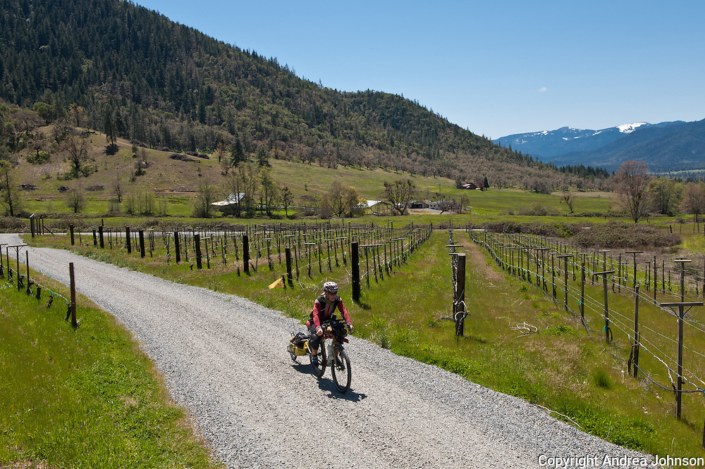 Bicyling Southern Oregon wine country, Wooldridge vineyards, Applegate valley