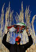 pvc112409a/11-24-09/arts.  Glass artist Xavier Zamarripa (CQ), holds one of his pieces aloft for a portrait Tuesday Nov. 24, 2009.  (Pat Vasquez-Cunningham/Journal)