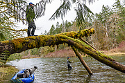 Pat Bogdan gets a high vantage for sighting steelhead while David Page delivers the cast. Vancouver Island, BC