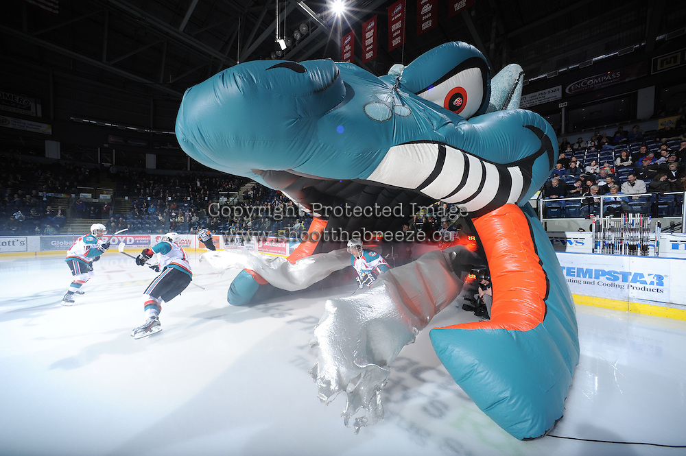 KELOWNA, CANADA - FEBRUARY 18: Cody Chikie #14 of the Kelowna Rockets enters the ice against the Red Deer Rebels at the Kelowna Rockets on February 18, 2012 at Prospera Place in Kelowna, British Columbia, Canada (Photo by Marissa Baecker/Shoot the Breeze) *** Local Caption ***