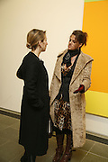 Tracey Emin and Sam Taylor Wood, Ellsworth Kelly exhibition opening. Serpentine Gallery and afterwards at the River Cafe. London. 17 March 2006. ONE TIME USE ONLY - DO NOT ARCHIVE  © Copyright Photograph by Dafydd Jones 66 Stockwell Park Rd. London SW9 0DA Tel 020 7733 0108 www.dafjones.com