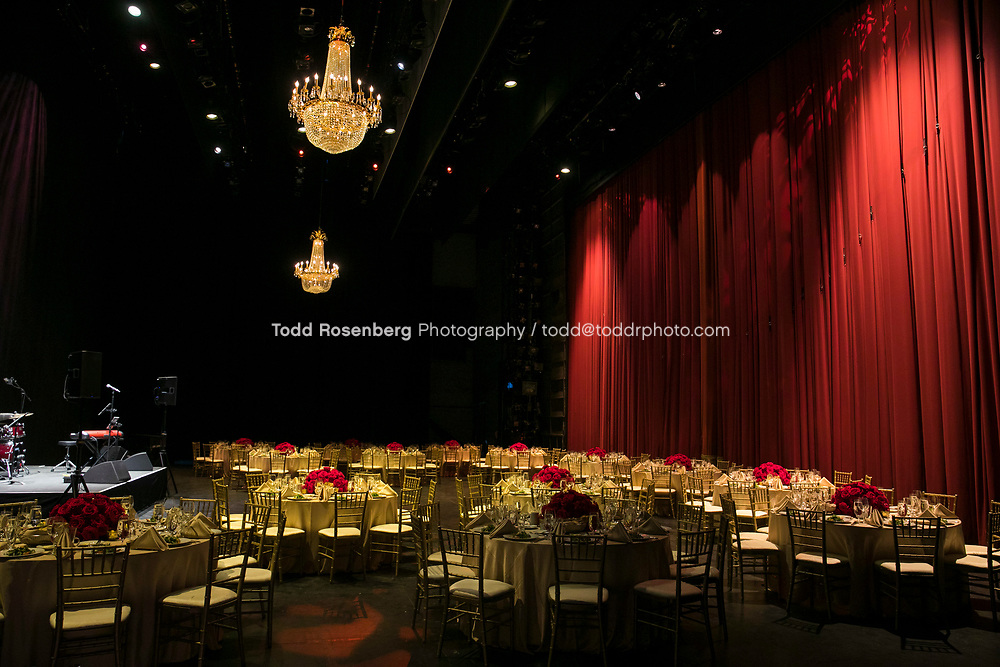 6/10/17 6:23:19 PM <br /> <br /> Young Presidents' Organization event at Lyric Opera House Chicago<br /> <br /> <br /> <br /> &copy; Todd Rosenberg Photography 2017