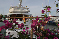 Flowers frame luxury yachts docked at superyacht marina in Port America's Cup; Valencia, Spain.