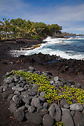 Issac Hale Beach Park, Puna, Island of Hawaii