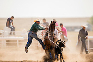 Rocky Boy Rodeo, Indian cowboys, Tie Down Roping, calf roping, Rocky Boy Reservation, Montana, Michael Bates