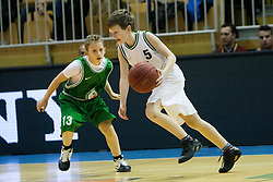 Young players of KK Grosuplje during Slovenian basketball All Stars Grosuplje 2013 event, on December 29, 2013 in Arena Brinje, Grosuplje, Slovenia. (Photo By Urban Urbanc / Sportida.com)