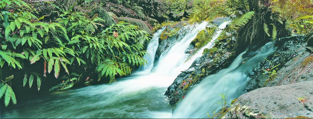 Waterfall, Kalalau Valley, Napali Coast, Kauai, Hawaii, Panoramic