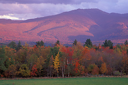 Fall Foliage. Mt. Lafayette as seen from Sugar Hill.  White Mountain N.F., NH