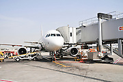 Israel, Ben-Gurion international Airport  Airbus A319 passenger jet on the ground
