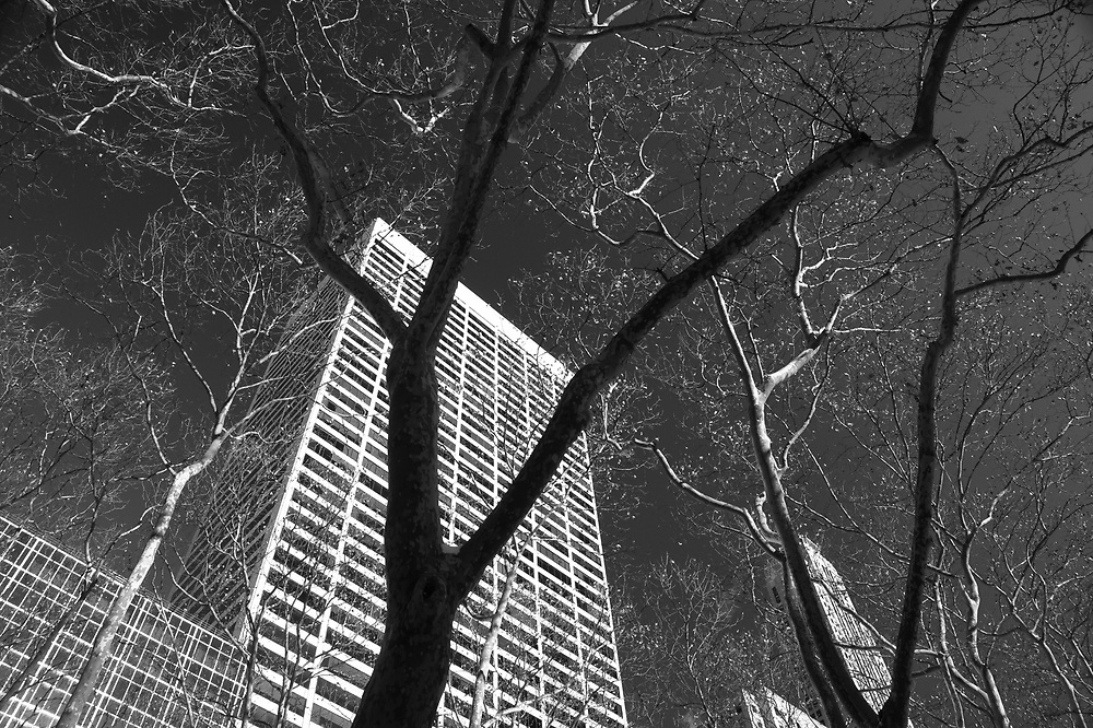 Grace building from Bryant park, NYC 2010