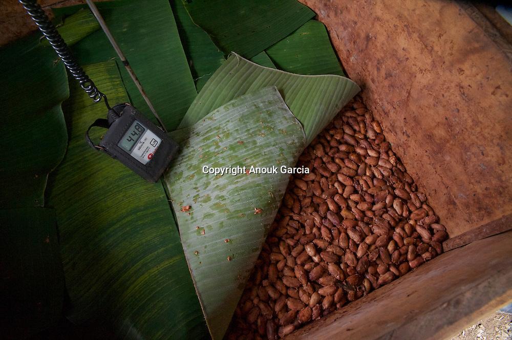 Controle de la tempe?rature de la fermentation/Control temperature of fermentation.