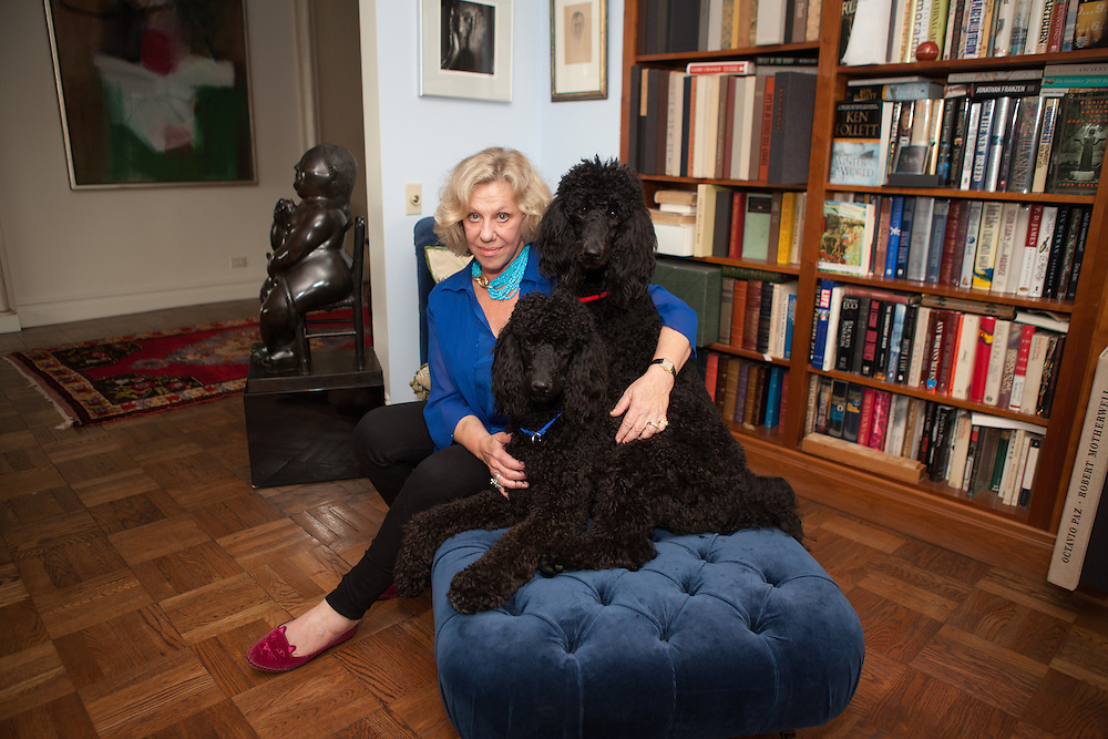 New York, NY - October 03, 2013 : Author Erica Jong with her poodles Simone (blue collar) and Collette (red collar), at her apartment in New York, NY on October 03, 2013. Fear of Flying, celebrating its 40th anniversary, is a 1973 novel by Erica Jong, which became famously controversial for its attitudes towards female sexuality, and figured in the development of second-wave feminism.