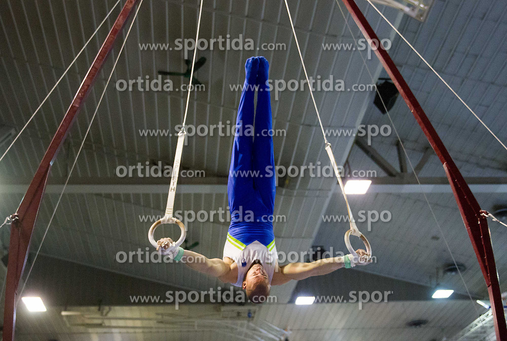 Gregor Saksida of Slovenia competes during Qualifications day of Artistic Gymnastics World Cup Ljubljana, on April 26, 2013, in Hala Tivoli, Ljubljana, Slovenia. (Photo By Vid Ponikvar / Sportida.com)