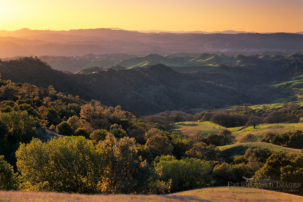 Sunset light on oak covered hillsides, Mount Diablo State Park ,Contra Costa County, CALIFORNIA