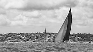 ENGLAND, Isle of Wight. 21st June 2012. J Class Solent Regatta. Hundred Guinea Cup. Lionheart, H1 off Ryde.