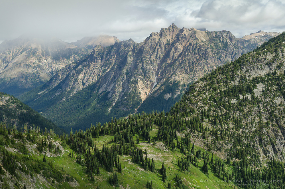 North Cascades seen from Maple Pass Trail