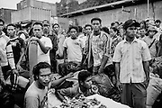 """Non-Papuan Migrants wait to embark at the shipping port in Jayapura, capital of Papua, which is the main entry point for goods and migrants entering and exiting the region.<br /> <br /> The province of Papua is large, and has abundant natural resources such as copper, gold, and timber. However, most indigenous Papuans live on less than $1 a day.  The incidence of poverty in Papua is the highest in the country, and double the national average.  Papua was acquired by Indonesia in 1969 in a disputed vote rejected by most Papuans. Papuans have sought independence for the past four decades.  A transmigration policy implemented by the federal government relocated almost a million non-Papuan migrants from surrounding provinces as part of a process of """"Indonesianization.""""  These migrants, along with another million voluntary migrants, dominate most of the region's trade and business, thereby controlling authority by dictating commerce in Papua.  Goods such as rice, medication and gas that are imported into Papua are sold at exorbitant prices, making the cost of living the highest in Indonesia.  Coupled with unequal access to education and training, opportunities for indigenous Papuans to advance economically are limited.  The consequence is economic inequality--wealthy migrants and poor indigenous Papuans-- and a marginalized indigenous population where poverty, unemployment, malnourishment, illness, illiteracy, and discrimination are the norm."""