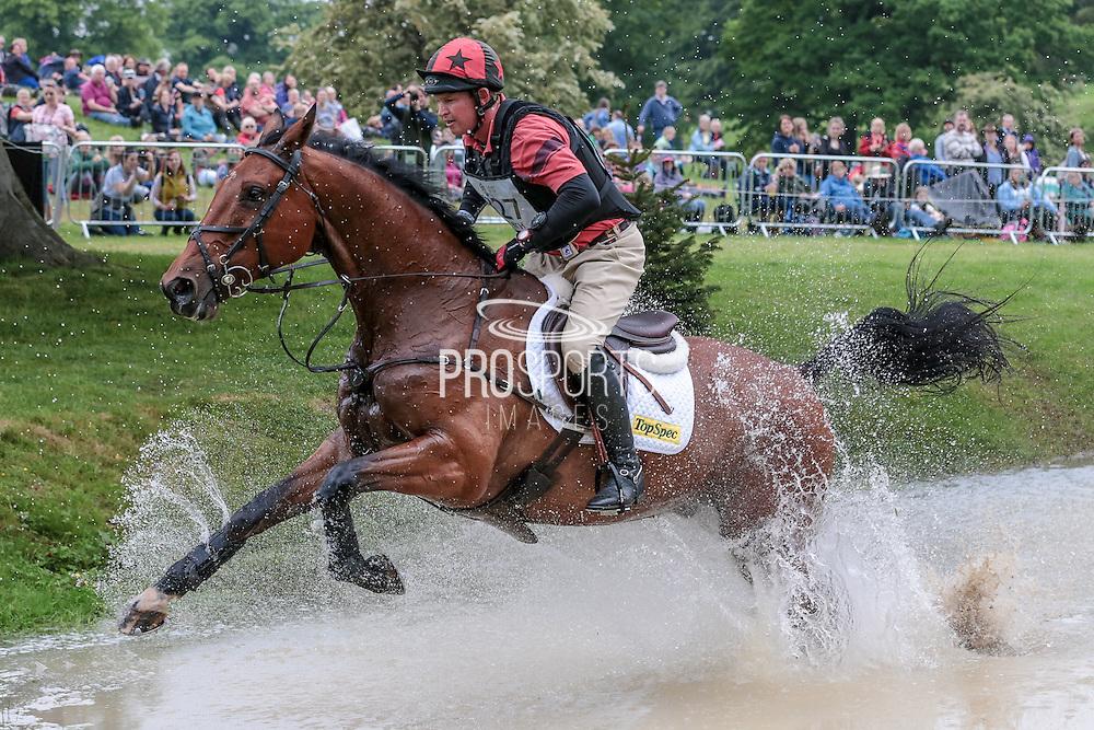 THE LION ridden by Matthew Heath at Bramham International Horse Trials 2016 at  at Bramham Park, Bramham, United Kingdom on 11 June 2016. Photo by Mark P Doherty.