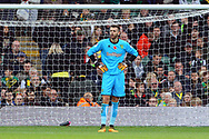 Angus Gunn of Norwich looks dejected after his side concedes it&rsquo;s 1st goal during the Sky Bet Championship match at Carrow Road, Norwich<br /> Picture by Paul Chesterton/Focus Images Ltd +44 7904 640267<br /> 28/10/2017