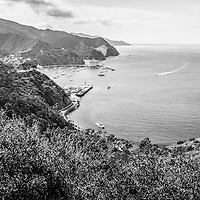 Catalina Island Avalon Bay aerial black and white photo from above in the mountains. Catalina Island is a popular travel destination off the coast of Southern California in the United States.