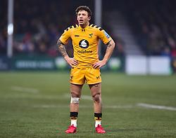 Matteo Minozzi of Wasps - Mandatory by-line: Alex James/JMP - 25/01/2020 - RUGBY - Sixways Stadium - Worcester, England - Worcester Warriors v Wasps - Gallagher Premiership Rugby