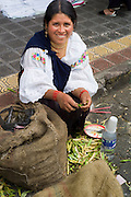 Indigenous woman husking beans for sale in market place, Otavalo, Ecuador