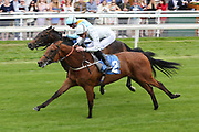 CHAPELLI (2) ridden by jockey James Doyle and trained by Mark Johnston winning The Jigsaw Sports Branding British EBF Novice Stakes over 5f in a photo finish (£15,000) during the Mid Summer Raceday at York Racecourse, York, United Kingdom on 15 June 2018. Picture by Mick Atkins.