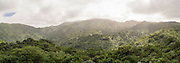 Panoramic view of El Yunque National Forest.