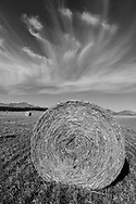 North America, Canada, Canadian,Alberta, Rocky Mountains, Straw bale near Pincher Creek