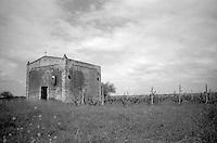 San Pancrazio Salentino -