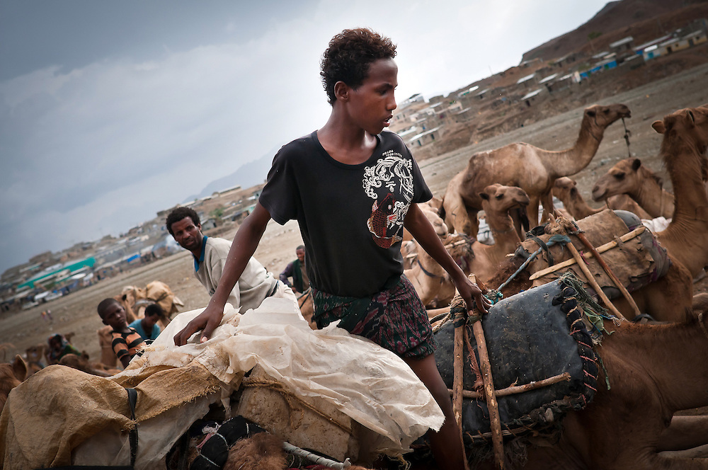 Unloading the salt blocks from camels for sale in Berahile, the local trading town. Danakil Depression, Ethiopia.