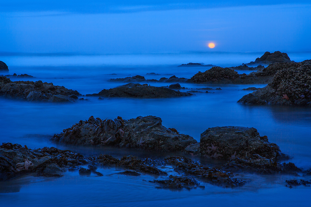 Golden glow of the setting moon just before dawn in Lincoln City, Oregon.